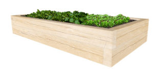 Oak_Sleeper_Planter_High