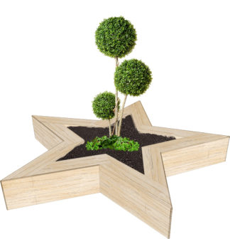 Playground_Star_Planter